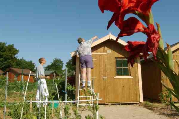 Quand la taxe abri de jardin coûte plus cher que l'abri Lui-même ?